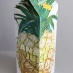 Förpackning Ananasjuice - 1 L